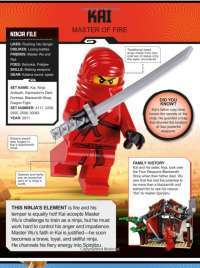 LEGO NINJAGO Character Encyclopedia Updated Edition #5